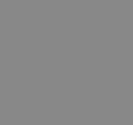 Hansehochzeiten Logo